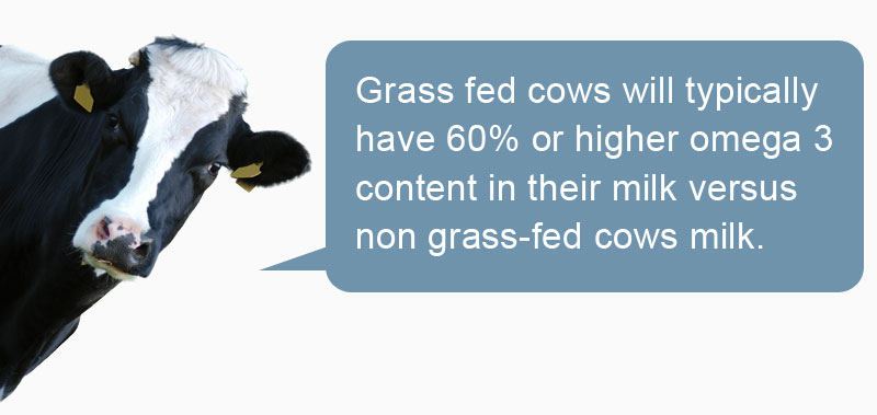 Grass fed cows have 60% omega 3